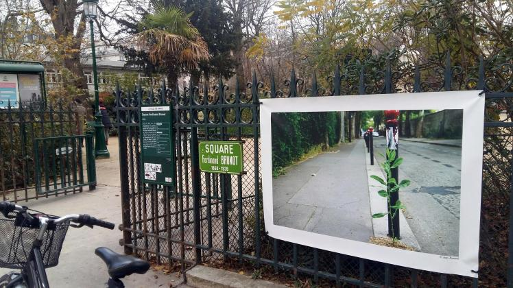 qi gong square ferdinand Brunot Paris 14èmee
